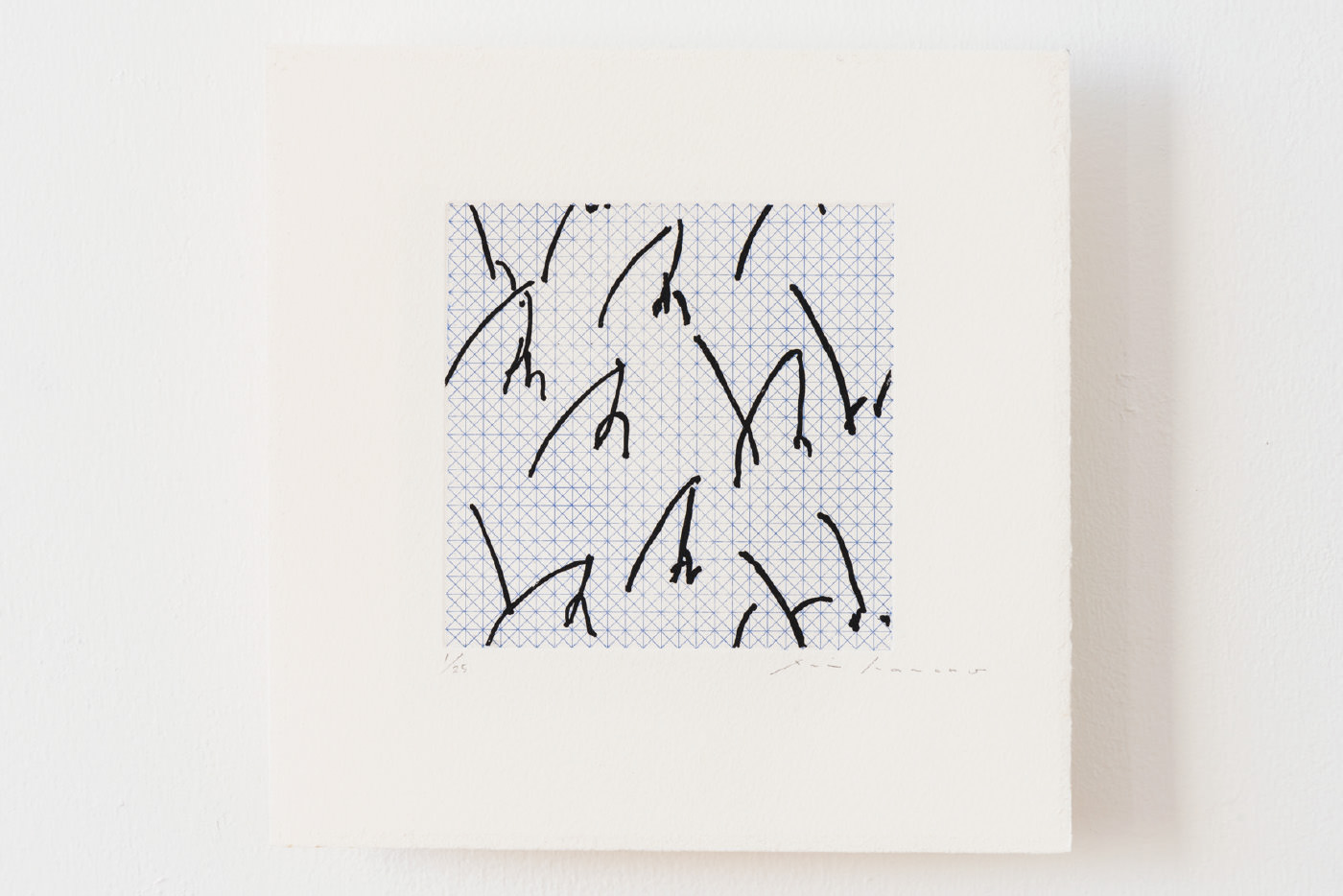 Garten, アルシュ紙にエッチング (2版2色)(etching on arches paper, 2plates 2colors), 225 × 225 mm, 2014 ( photo by Ken Kato )